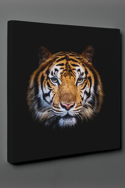 Tiger Canvas Printings