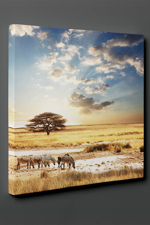 Africa Canvas Printings