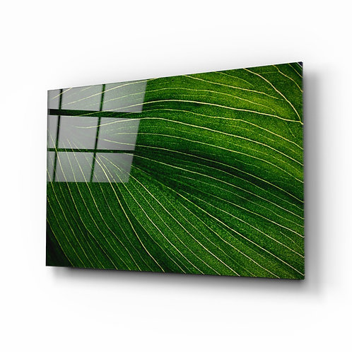Green leaf Glass Printing