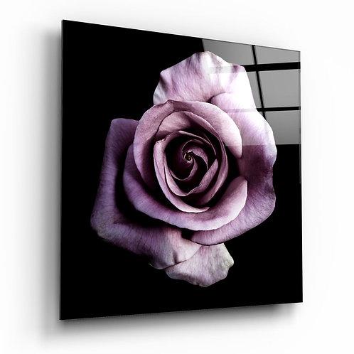 Purple Rose UV Printed Glass Printing