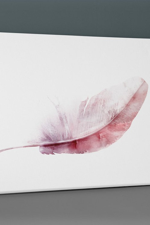 Pink Feather Canvas Printings