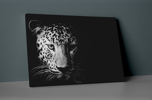 Cheetah Canvas Printings