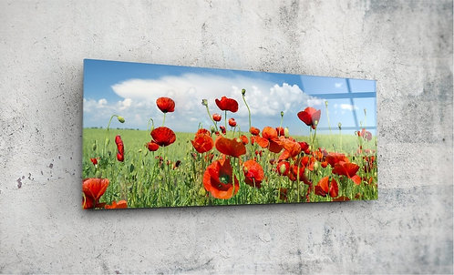 Poppy Flowers  UV Glass Printing