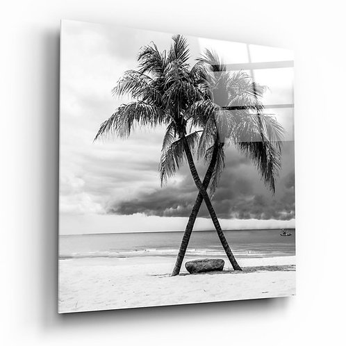 Palm Trees UV Printed Glass Printing