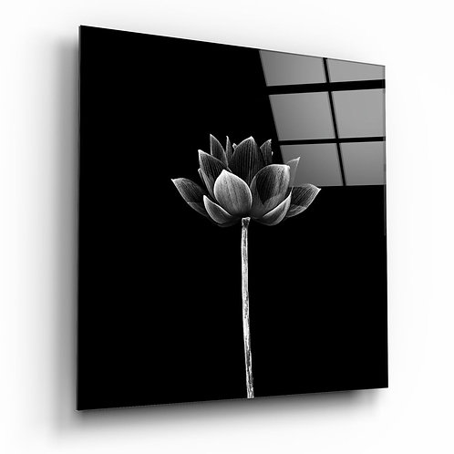 Floral UV Printed Glass Printing