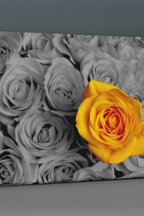 Yellow Rose Canvas Printings