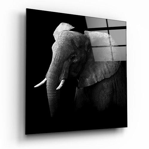 Elephant UV Printed Glass Painting