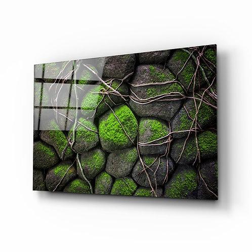 Mossy Stones Glass Printing