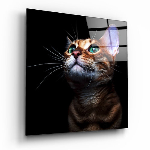Kitten UV Printed Glass Painting