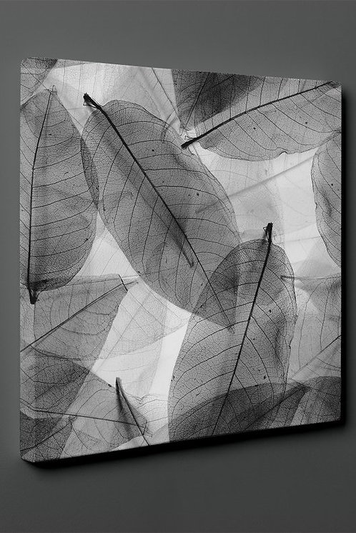 Black And White Leaves Canvas Printings
