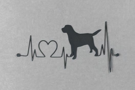 Cão com Linha da Vida
