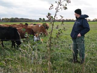 Natuurinclusieve landbouw voor meer biodiversiteit en gezondere dieren