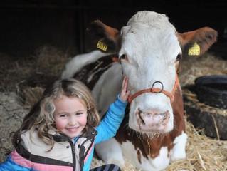 Kinderboerderij Emmelerbos vervult positieve rol voor de wijde regio