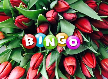 Bingo op het Tulpenbelevingsveld