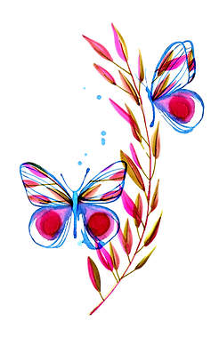 butterflyred_edited.png