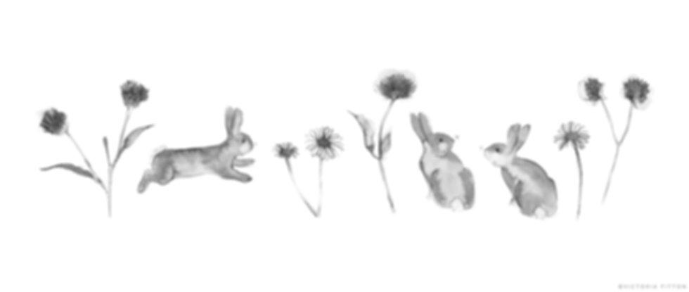 Cottontail Frieze.jpg