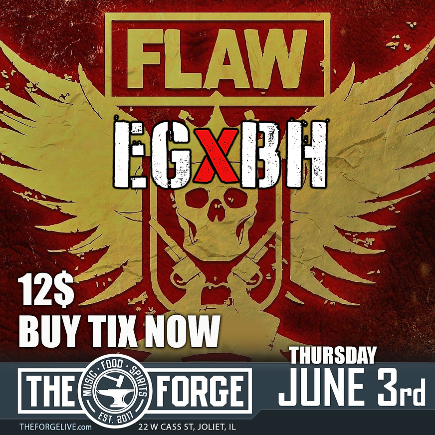 FLAW FORGE.png
