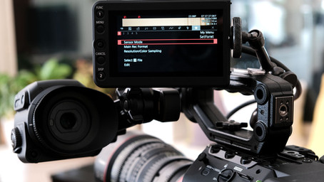 In-Depth with the C500 MKII: Part 2