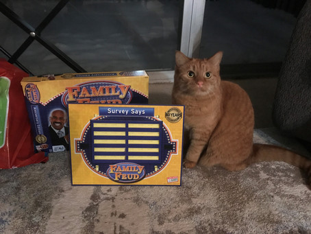 Don't Buy Family Feud: Anniversary Edition