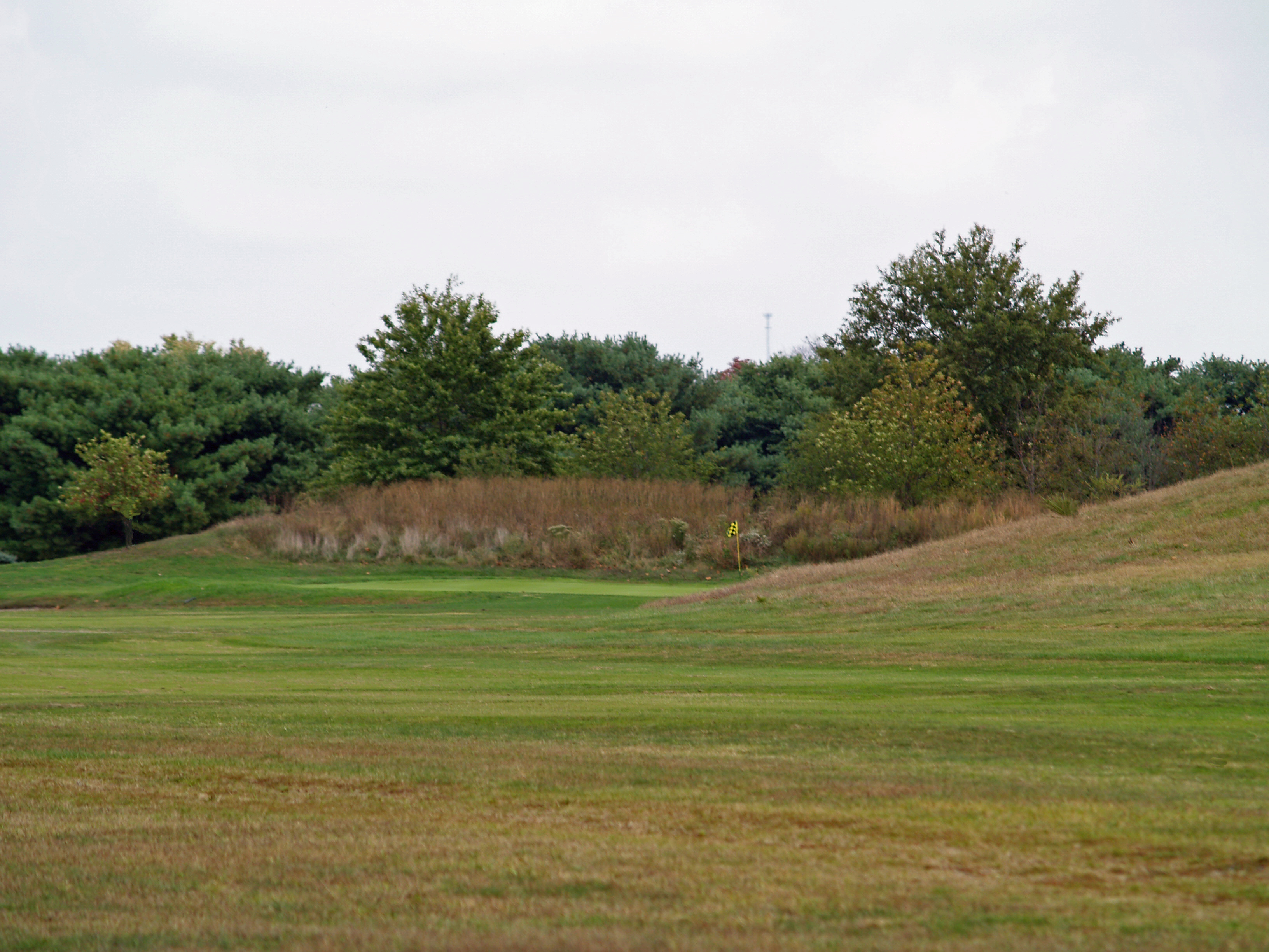 Seaford Golf and Country Club - #17