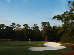The Reserve - #15