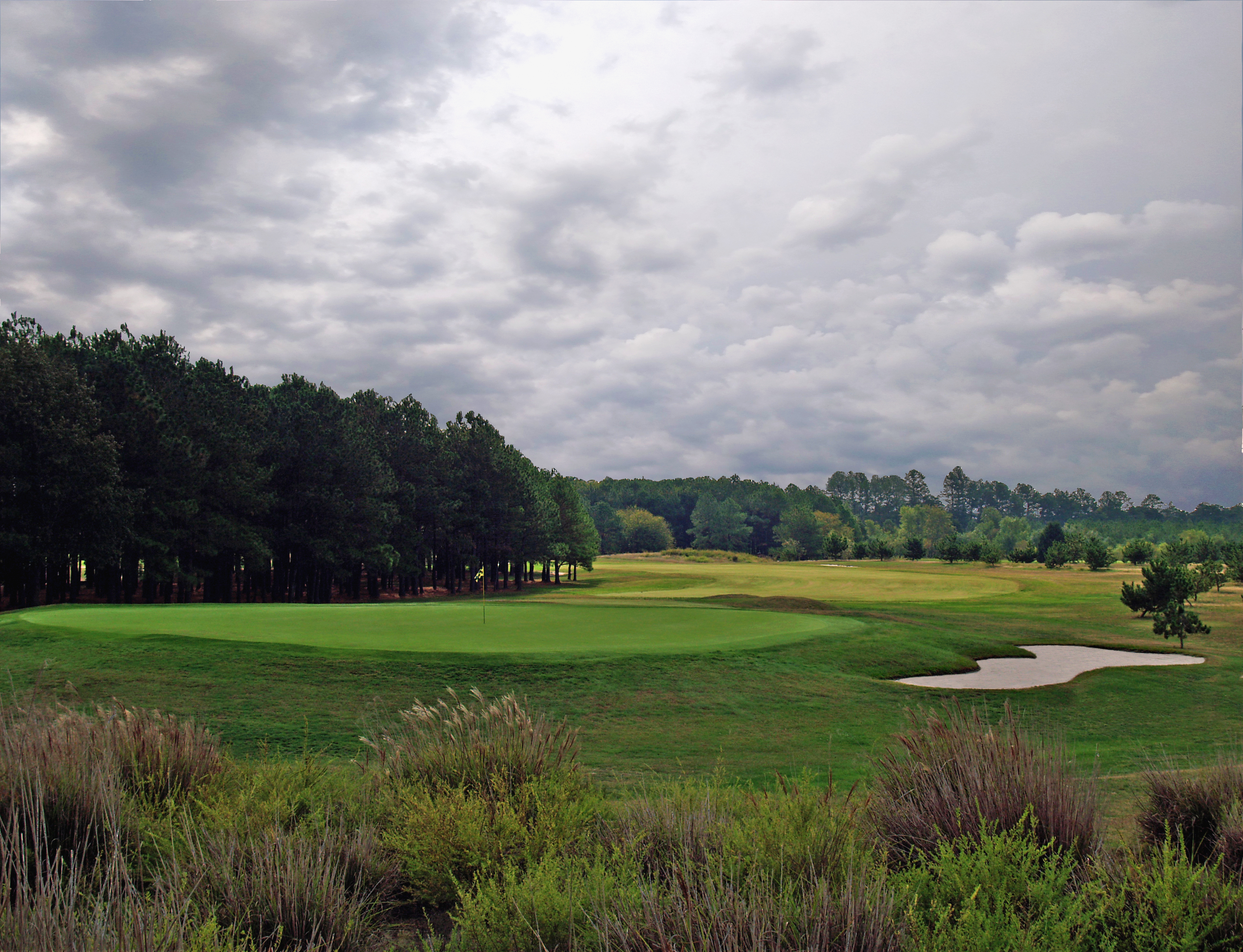 Seaford Golf and Country Club - #14