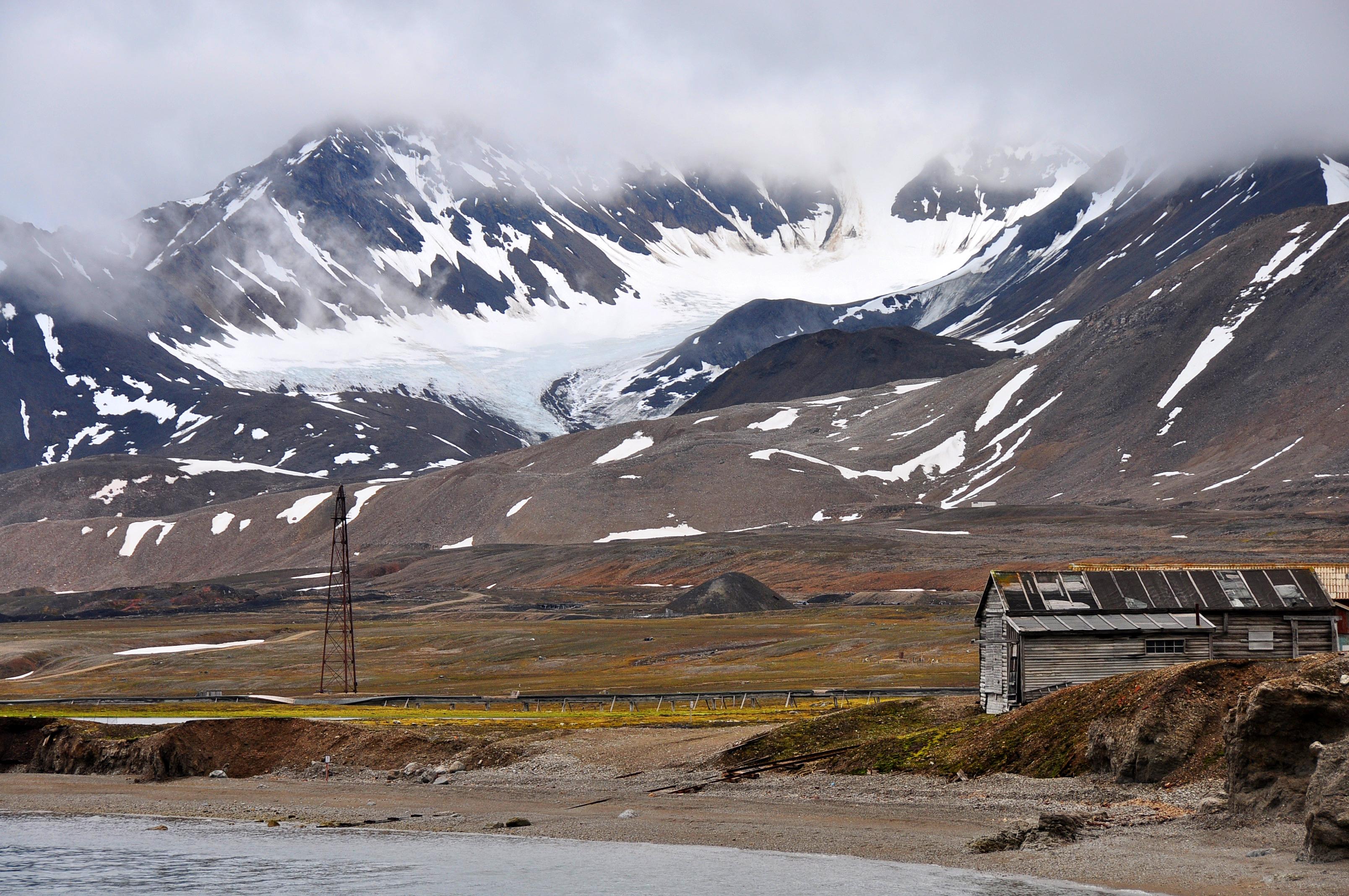 Tundra Area