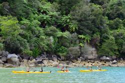 Abel Tasman National Park (South Island)
