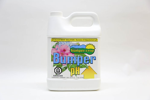 Bumper pH Up 1L