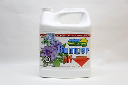 Bumper pH Down 4L