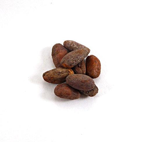 Kakaobohnen, geröstet