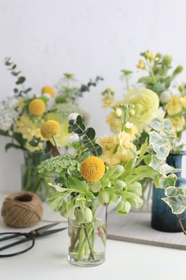 春の黄色い花たち