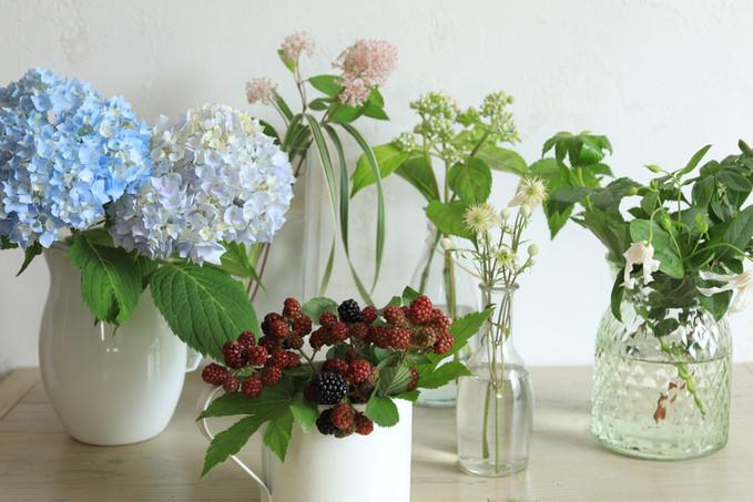 初夏の花屋さん