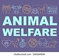 animal welfare.webp