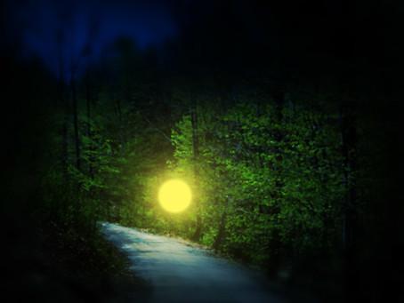 Paulding Light: Debunked