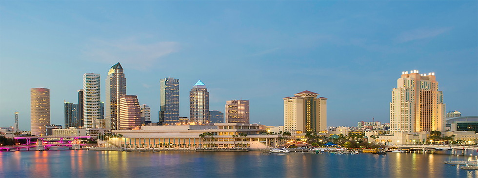 tampa bay psychiatry skyline 2.png