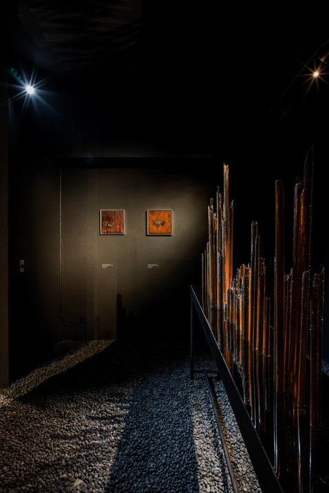 Into the Black Room