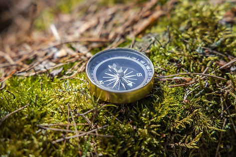 traveller-compass-on-the-grass-in-the-fo