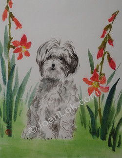 Puppy with Daylilies