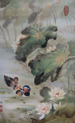 Lotus and Mandarin Ducks