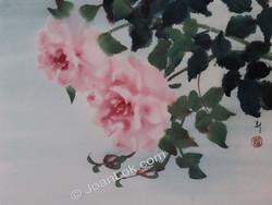Pink Ladies (Roses)