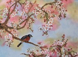 Cherry Blossoms and Robin