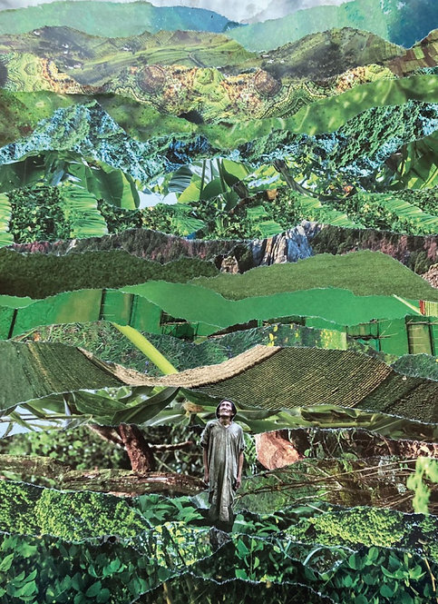 Jungle by Davinia Garcia