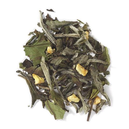 Citrus Matcha Green Tea, Organic/Kosher