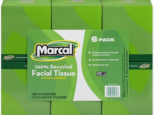 Recycled Facial Tissue