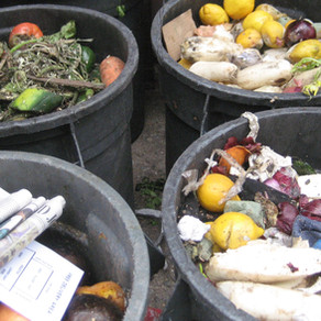 The Problem with 'Free' Waste Collection