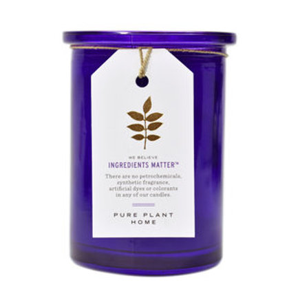 Recycled Purple Glass Wildcrafted French Lavender Candle