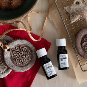 Seasonal DIY Gifts & Projects with Essential Oils