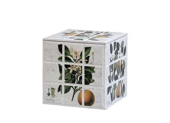 Botanical Cube