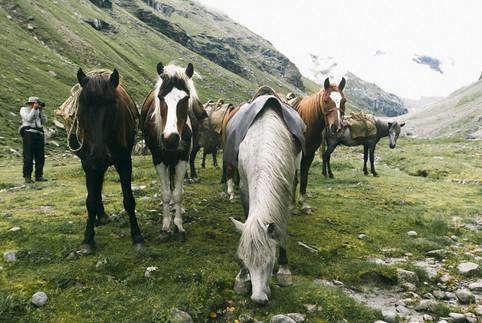 Blog-Hampta-Pass-Manali-Himachal-India-9